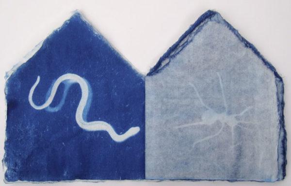 Spirit House by Nanette Wylde